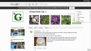How to create circles and find people to circle in G+ Business Pages
