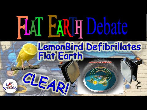 LemonBird performs CPR on flat earth.  Will it be enough to save it? thumbnail