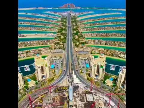 Palm island Dubai                          #shorts