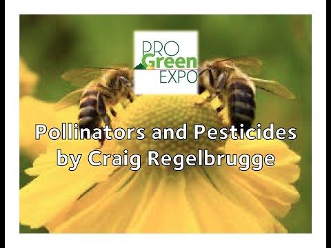 Pollinators and Pesticides by Craig Regelbrugge