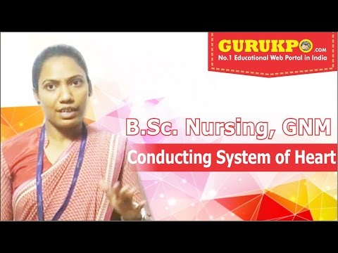 Conducting System of heart,(B.Sc Nursing, GNM),(English),Gurukpo