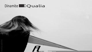 Dinamite - Qualia (d_func. aka Alexander Kowalski Remix) (Affin 152)