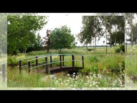 видео: Ландшафтный дизайн дачного участка. Интересные идеи