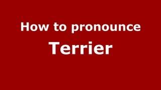 How To Pronounce Terrier - Pronouncenames.com