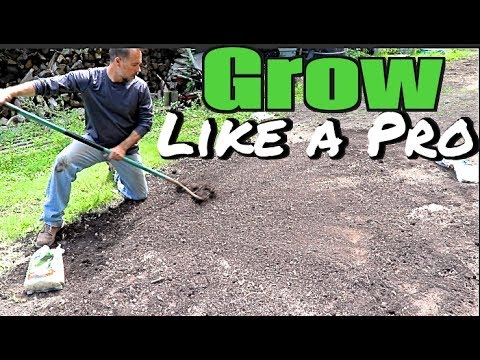 How To Plant A Yard And Gr Seed Like Pro Grow New Lawn