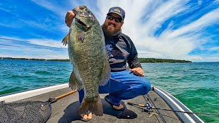 Raw and Uncut Fishing For GIANT Fish! HUGE Bass On Ultralight Tackle!