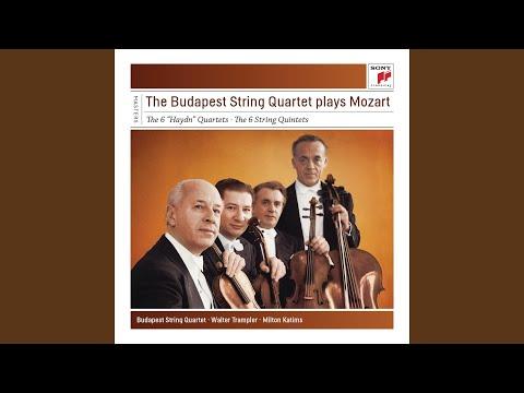 Quartet No. 14 In G Major For Strings, K. 387: IV. Molto Allegro