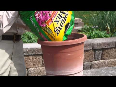 Gardening Guide #2 : Preparing the Soil