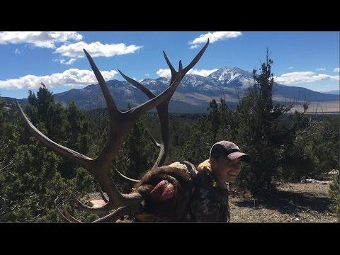 Massive Nevada Bull Elk Hunt During Rut (370