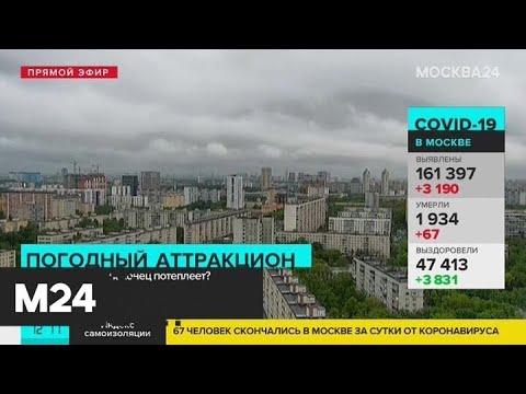 В Москве аномально холодная погода - Москва 24