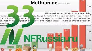 №33 Ограничение метионина как способ борьбы с раком. Доктор Майкл Грегер, русская озвучка
