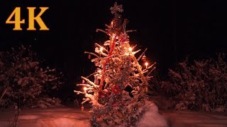4K Christmas Wonderland & Christmas music & Sound of crackling fire in Fireplace