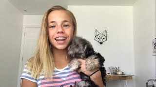 10 hacks for you and your puppy or dog!