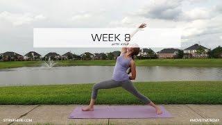 Reverse Warrior - Week 8