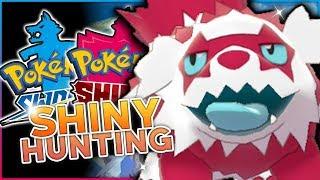 LIVE SHINY GALARIAN ZIGZAGOON HUNTING! Pokemon Sword & Shield Shiny Hunting!