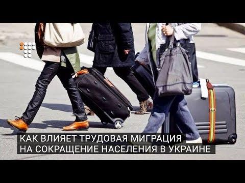 Как влияет трудовая миграция на сокращение населения в Украине