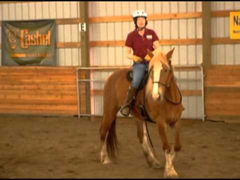 Iron Free Riding No Bits No Spurs Horse Training With