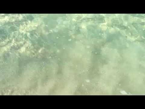 Healing Water Sound from Jamaica 4 Hours -  Enjoy the sound