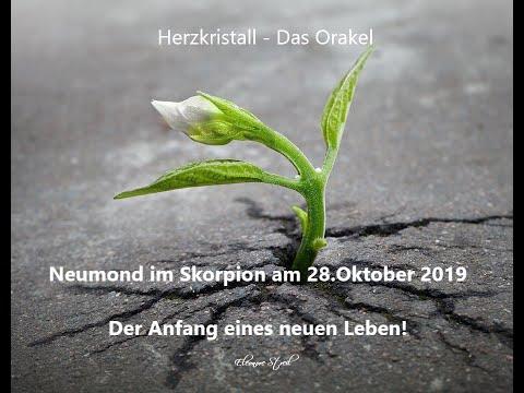 Neumond im Skorpion am 28.Oktober 2019 - Der Anfang eines neuen Leben!