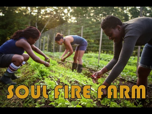 Soul Fire Farm: Raise the Roof for Food Justice
