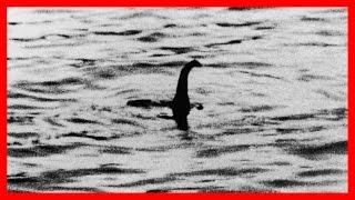 CURIOSIDADES del MUNDO - Monstruo Lago Ness