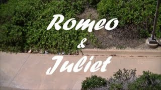 Romeo and Juliet School Project