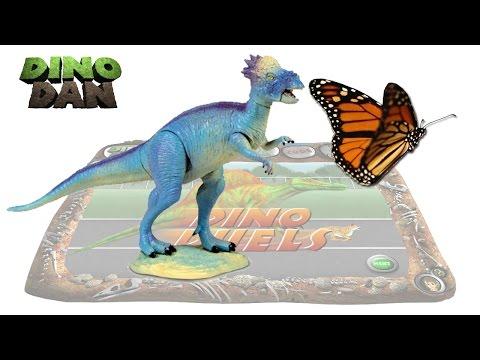 DINO DAN : DINO DUELS #19 - Pachycephalosaurus VS. Butterfly