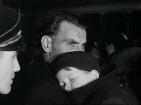 The Netherlands welcomes Hungarian refugees (Week number: 56-47)