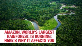 amazon-world-largest-rainforest-burning-affects