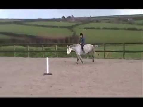 Kerrin and Blaine's Level 3 Freestyle Parelli Audition