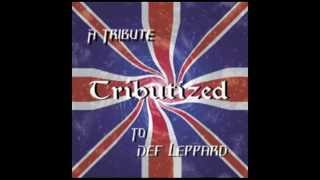 Watch Def Leppard It Could Be You video
