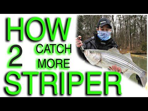 How To Catch More Striper (Gallatin TN Steam Plant)! GoPro