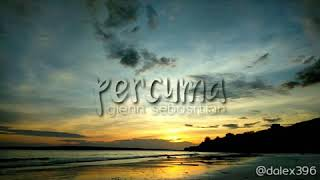 Download Lagu Glen Sebastian - PERCUMA | story Wa keren mp3