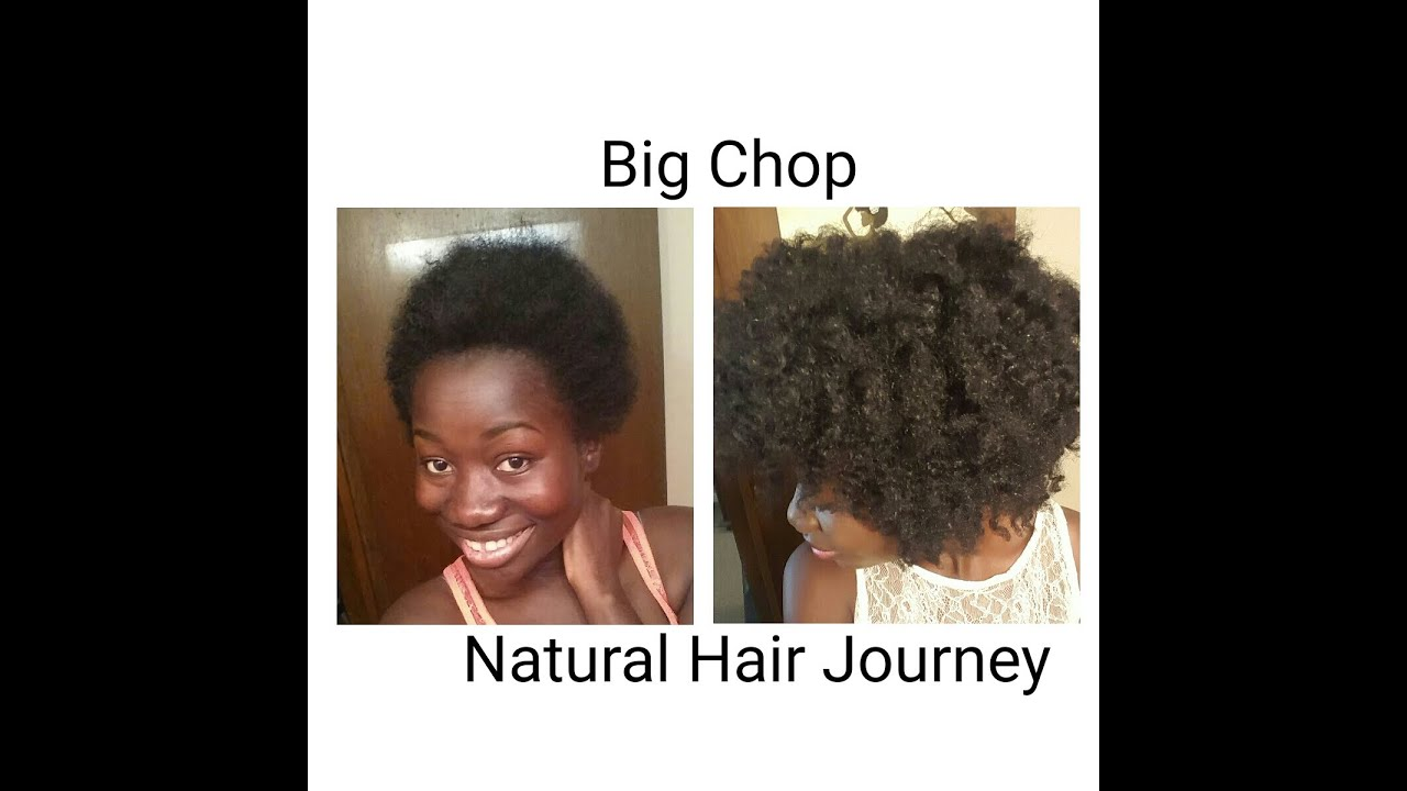 Hairstyles For Black Hair Journey | 25 best ideas about