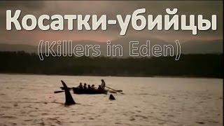 Косатки убийцы (Killers in Eden) HD