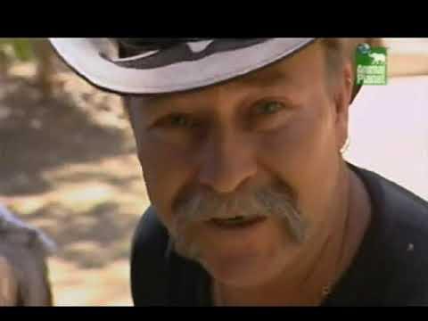 Если укусила самая ядовитая змея Австралии (The Snakebuster)