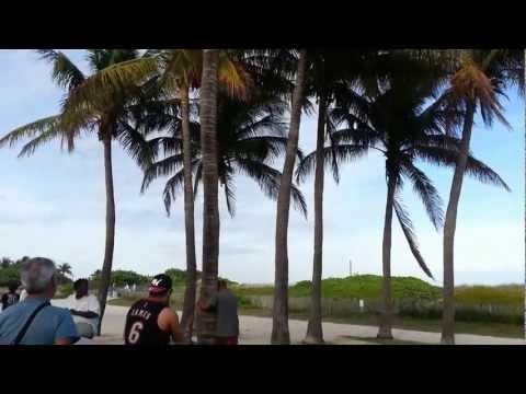 Coconut Dre in South Beach, Miami