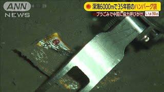 深海6000mにハンバーグ袋・・・プラごみで協力呼びかけ(19/11/25)