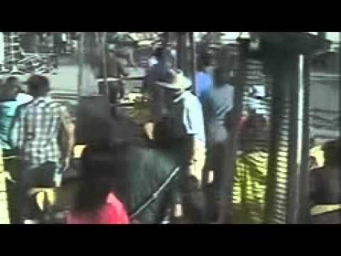 Venice Boardwalk hit and run crash   CCTV video   World news   theguardian com