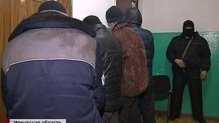 В Иркутской области задержаны черные лесорубы