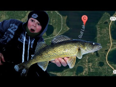 Ice Fishing Gull Lake Walleye's