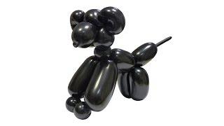 Изготовление собачки из воздушных шаров - инструкция