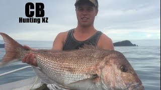 Big Snapper in the shallows