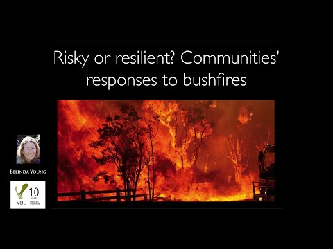 Risky or resilient? Communities' responses to bushfires