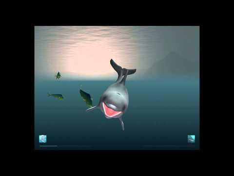 I Am Dolphin Play as a Dolphin iOS Gameplay