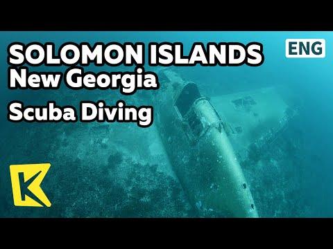 【K】Solomon Islands Travel-Guadalcanal Island[솔로몬제도 여행-뉴조지아]스쿠버다이빙, 열대어와 전쟁잔해/Scuba Diving
