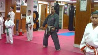 Step by Step: Jyoshinmon Shorin Ryu-Pinan Sandan