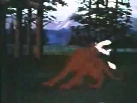 Lassie's Rescue Rangers - Cartoon Opening