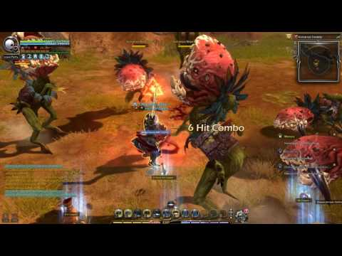 Dragon Nest Europe - Lv 93 Daily Quest [Arch Heretic]