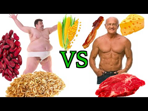High Carb Vegan Vs. Low Carb Paleo Diet - THE TRUTH